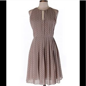 J Crew Factory Pleated Dot Dress size 14
